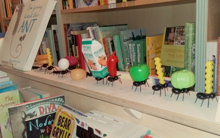 The Little Ripon Bookshop Picture book display
