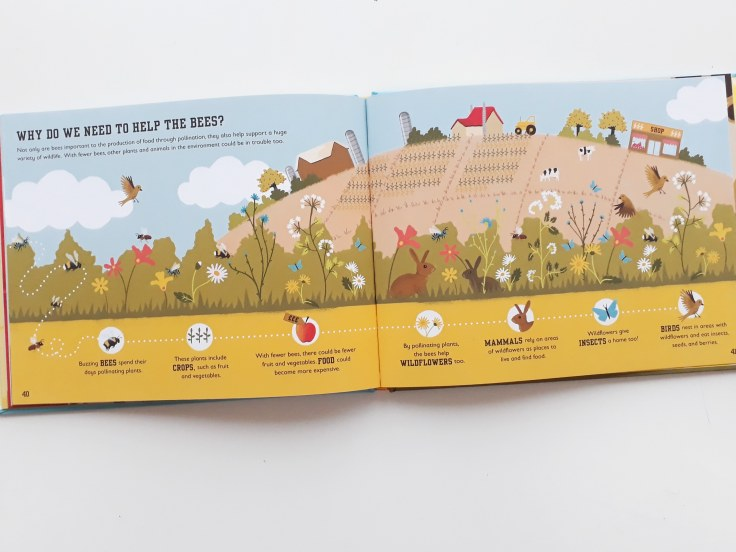 Why do we need to help bees in The Bee Book by Charlotte Milner DK Books