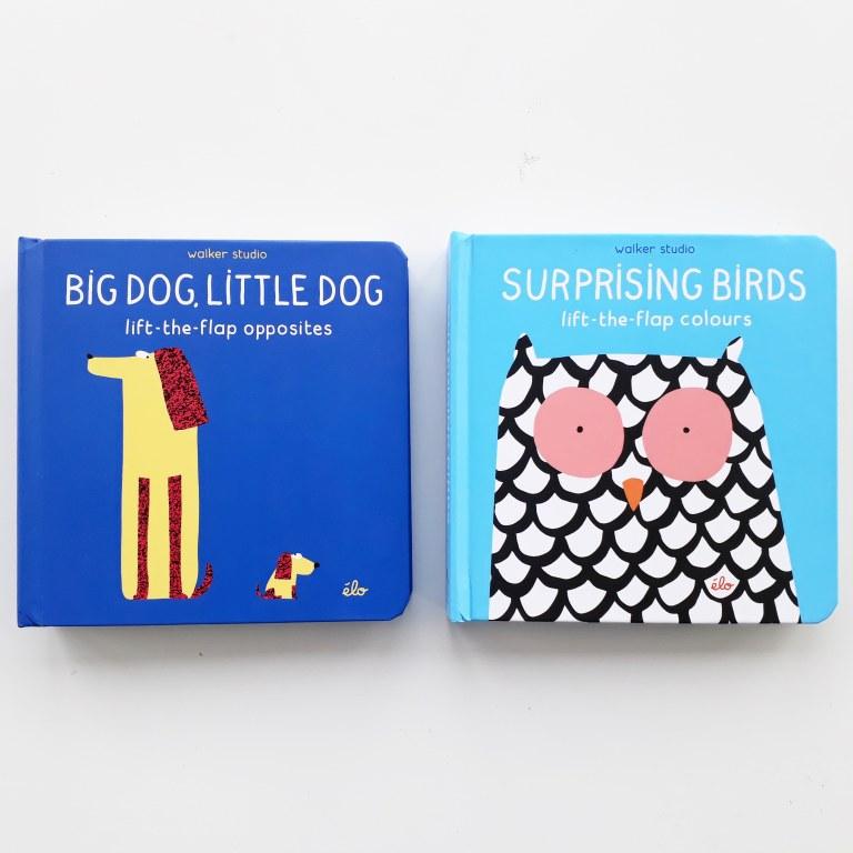 big dog little dog surprising birds lift the flap picture books walker studios elo