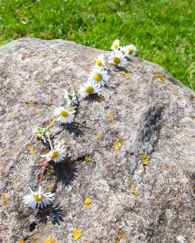 Daisy chains from The Anti-Boredom Book of Brilliant Outdoor Things to Do Andy Seed and Scott Garrett kids non fiction books Bloomsbury