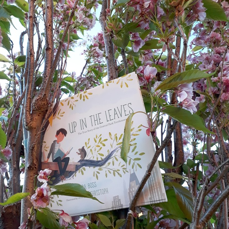 Woodland walks Up in the Leaves Shira Boss Jamey Christoph Sterling Children's Books