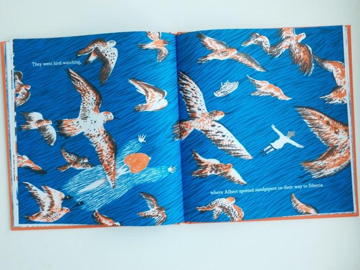 Flying and birdwatching in Grandma Z Daniel Gray-Barnett Scribble Kids Books