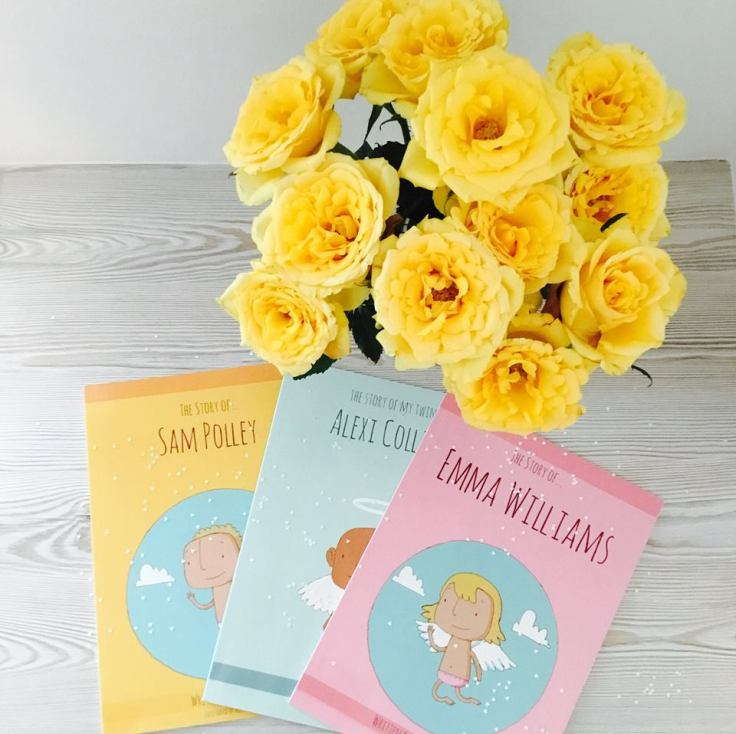 The Story Of baby and child loss books
