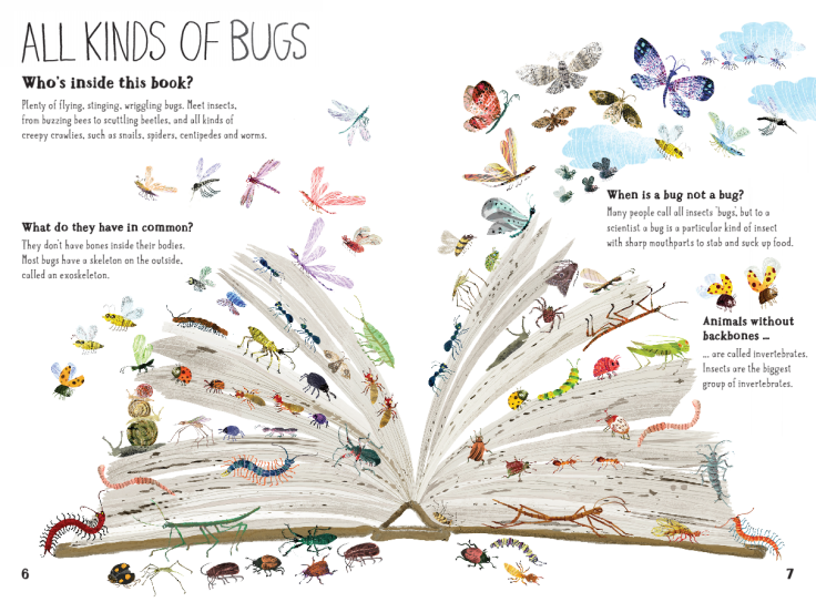 All kinds of bugs in The Big Book of Bugs by Yuval Zommer