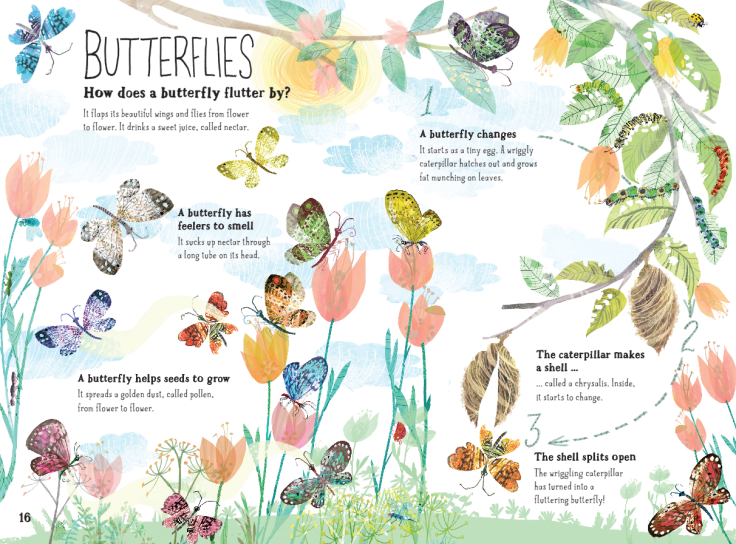 Butterflies in The Big Book of Bugs by Yuval Zommer