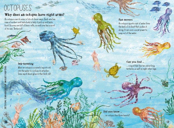 Octopuses in The Big Book of the Blue by Yuval Zommer