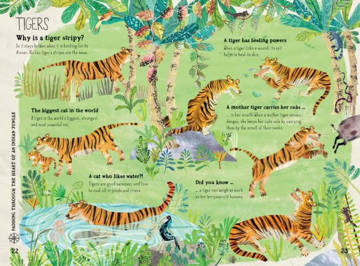 Tigers in The Big Book of Beasts by Yuval Zommer