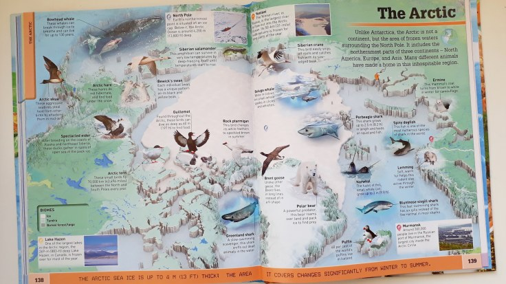 Animals in the Arctic in What's Where on Earth Atlas for kids DK Books children's non fiction
